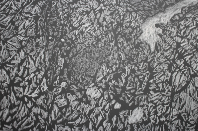 "Close up of Giuseppe Penone's ""Pelle di grafite - riflesso d'ombra"", 2007"