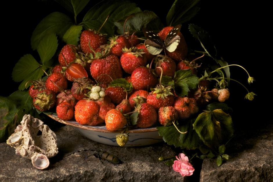 strawberries2009