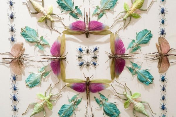 14-angus-insecta-fantasia